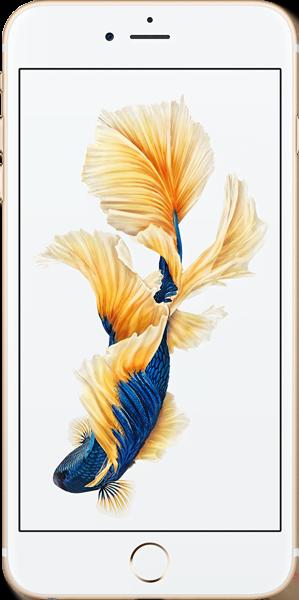 Iphone 6S Plus Şarj Usb Entegre Değişimi