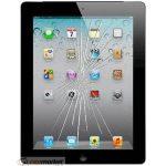 Apple iPad 2 Cam Değişimi