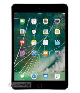 Apple iPad 4 Cam Değişimi