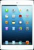 Apple iPad Mini 2 Ekran Değişimi